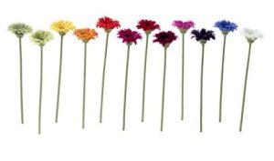Bataille des fleurs