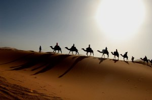 randonnée dans le desert